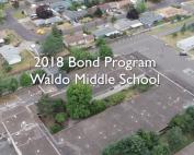 Waldo overview video 2019